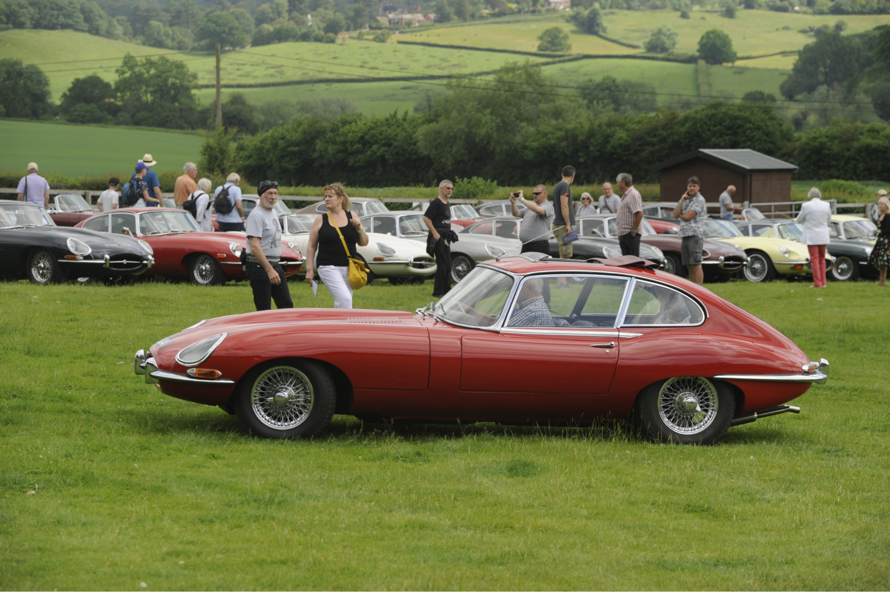 E-type-60-Saturday-photo-by-Abigail-Humphries-262