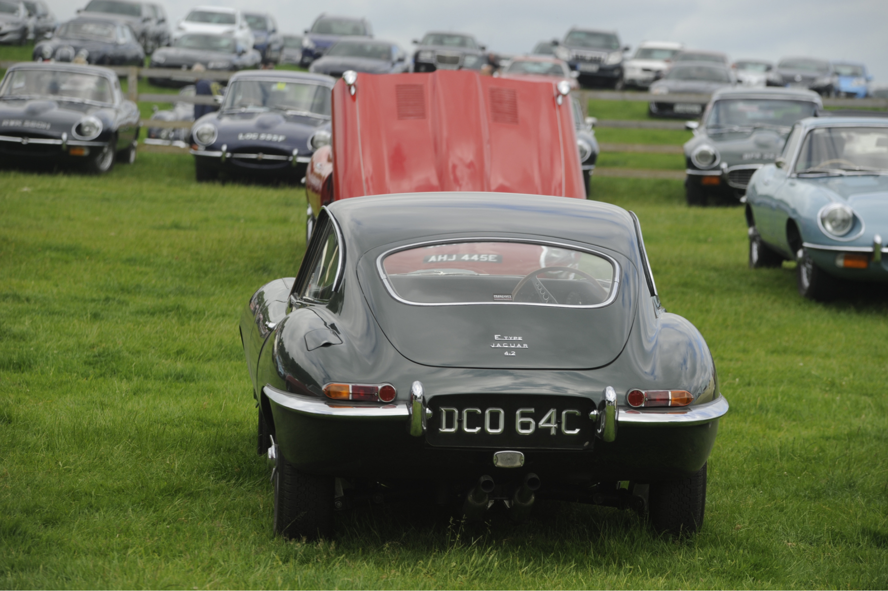 E-type-60-Saturday-photo-by-Abigail-Humphries-266