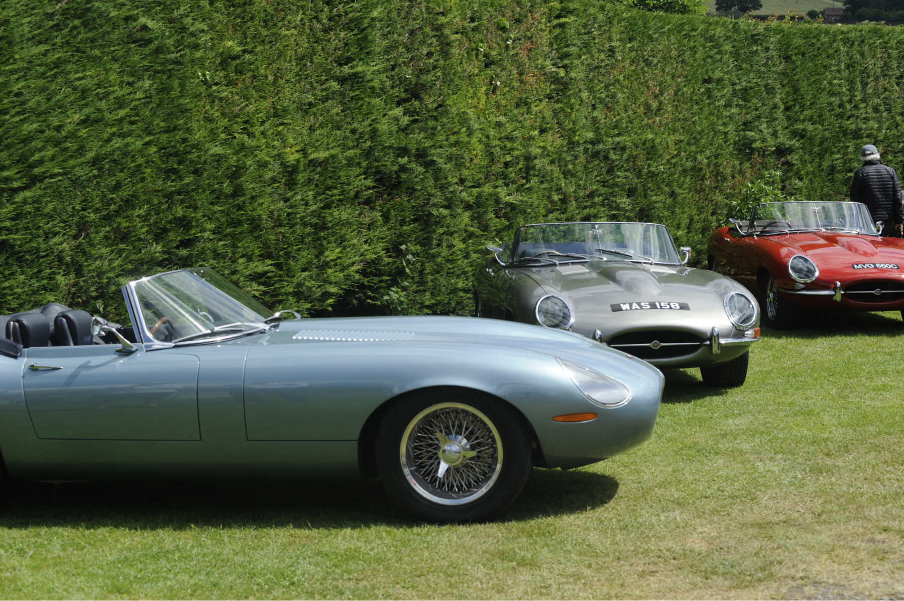 E-type-60-Saturday-photo-by-Abigail-Humphries-492